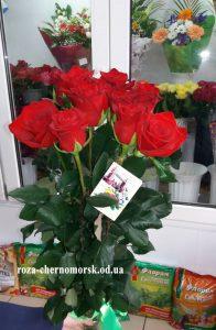 купить розы в черноморске